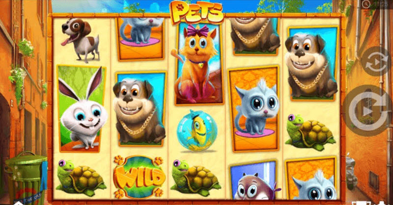 pets casino slot